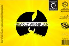 Shaolin Finger Jab -