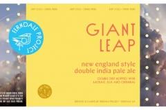 Ferndale Project - Giant Leap
