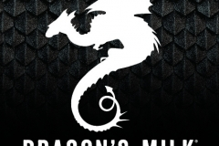 New Holland Brewing Co. - Dragon's Milk