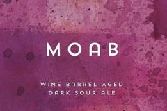 Moab - Wine Barrel-aged Dark Sour Ale